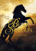 The Black Stallion (Bilingual) DVD Movie