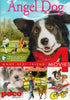 Angel Dog / My Dog Shep / George / Paco (Man s Best Friend 4 Movies) DVD Movie