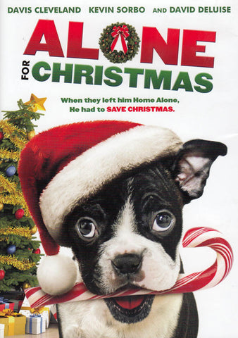 Alone for Christmas DVD Movie