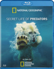 Secret Life Of Predators (National Geographic) (Blu-ray)