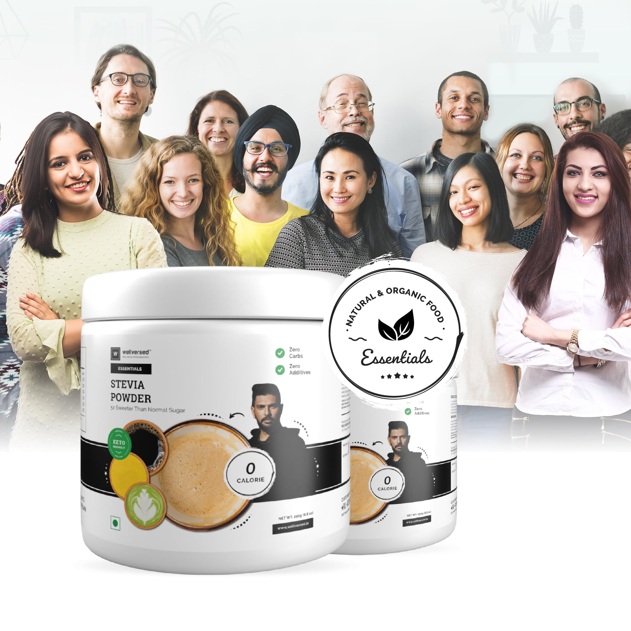 Wellversed - Stevia Powder | 100% Natural Sugar Free Sweetener | Zero Calorie, Zero Carb