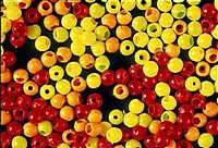 Firefly Hot Head Beads in assorted Colours & Sizes