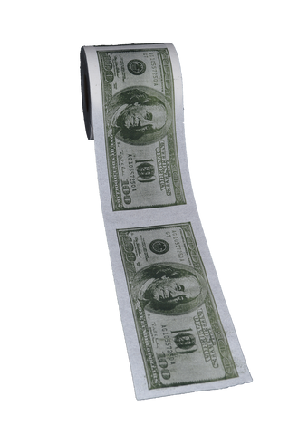 $100.00 Bill - Printed Toilet Paper