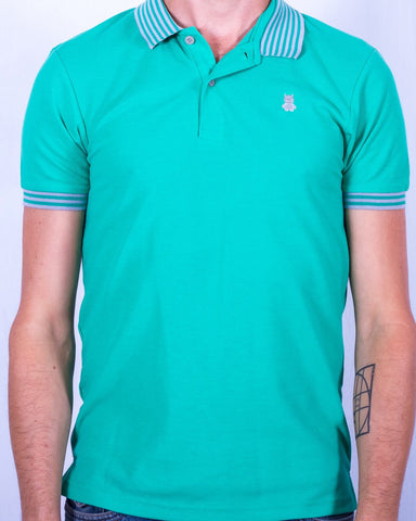 Green Polo with Gray Striped Collar