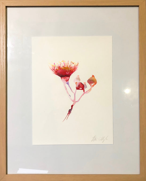 Cascading gum blossom original watercolour