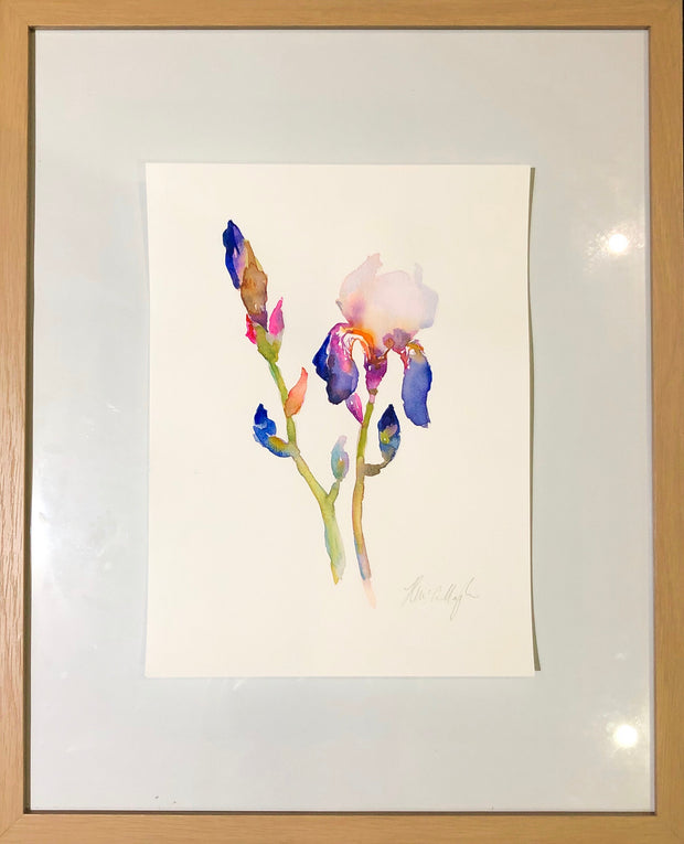 Irises 3 original watercolour