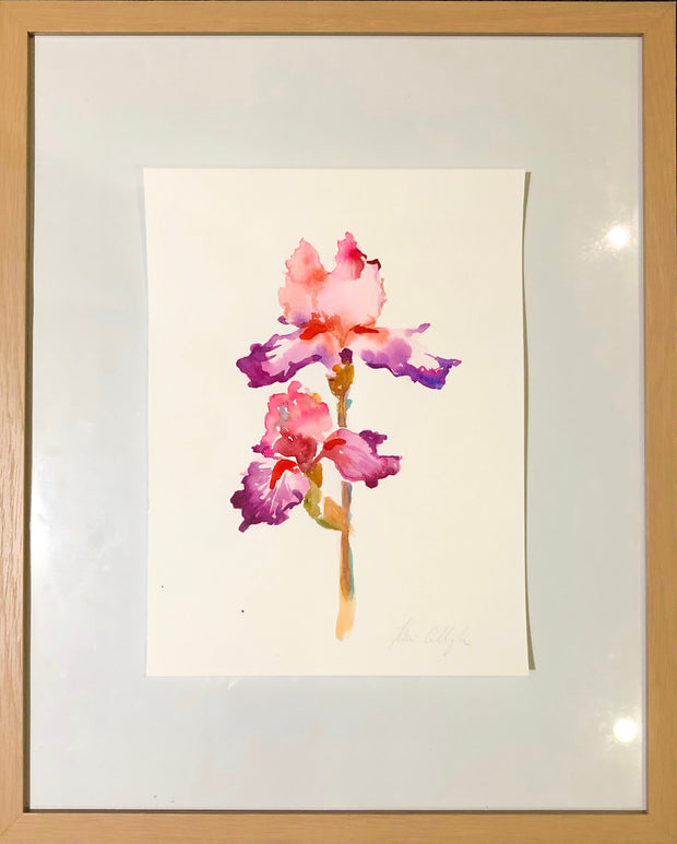Iris No 2. Original watercolour