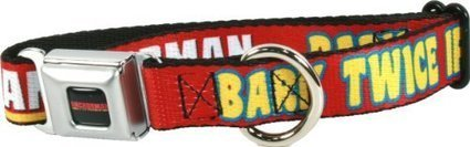 Anchorman Bark Twice Dog Collar