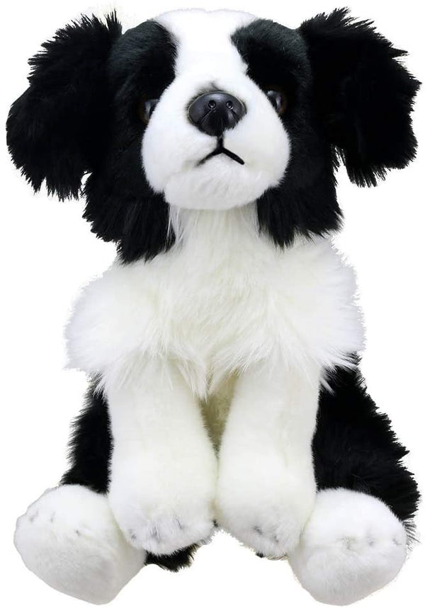 wilberry border collie dog