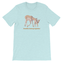 Load image into Gallery viewer, Families Belong Together Boxy Tee