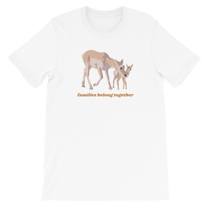 Families Belong Together Boxy Tee