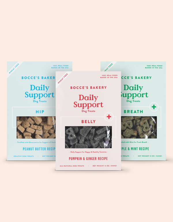 Basics Daily Support Assorted Box Bundle