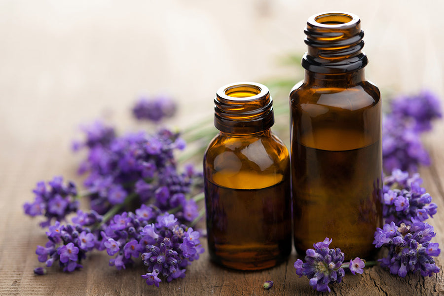 Lavender Oil for Curly Natural Hair - INGREDIENT HIGHLIGHT