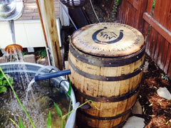 Repurposed oak whiskey barrel used for backyard pond and pump