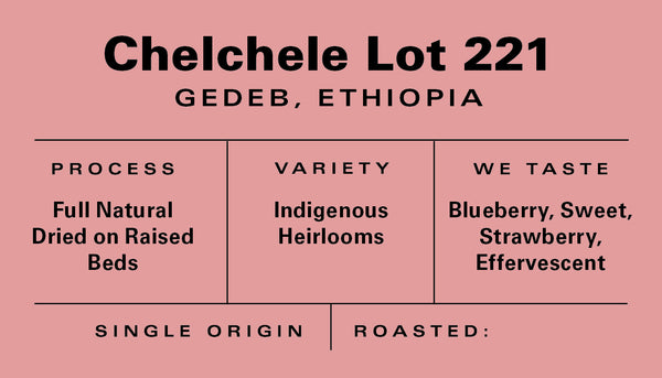 Ethiopia - Chelchele Lot 221 - Natural (Organic)