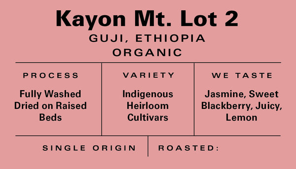 Ethiopia - Kayon Mountain Lot 2 - Washed (Organic)