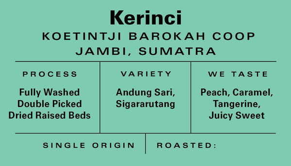 Sumatra - Kerinci - Fully Washed