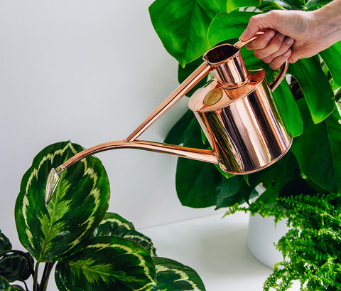 Haws Watering Can 1 Litre Copper