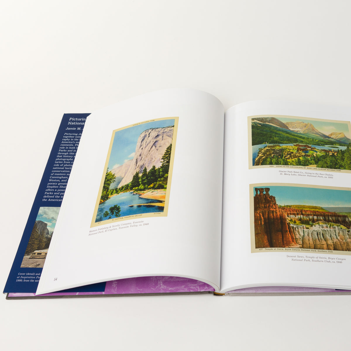 Load image into Gallery viewer, Picturing America's National Park - Books – Shoppe Amber Interiors