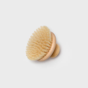 Body Brush - Bath – Shoppe Amber Interiors
