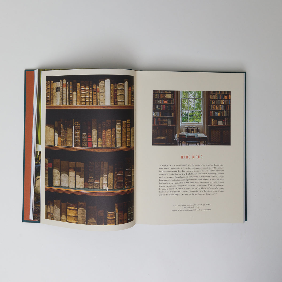 Load image into Gallery viewer, Bibliostyle - Books – Shoppe Amber Interiors