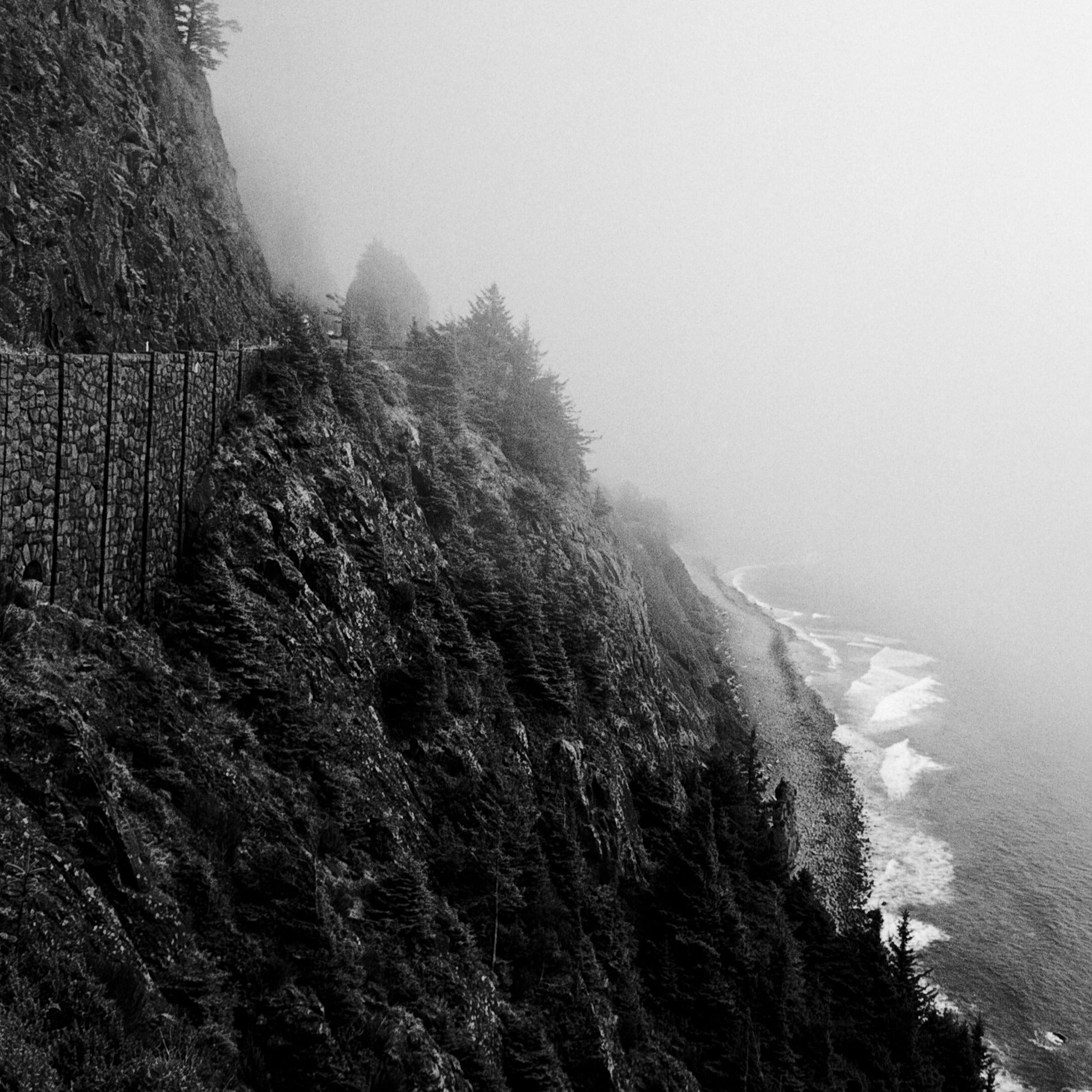 Oregon Coast by Kealan Shilling