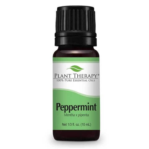 Plant Therapy Essential Oils - Peppermint - 10mL