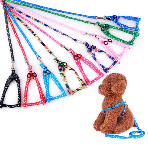 Adjustable Nylon Pet leash and harness