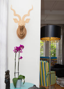Kudu head in bamboo wall mount
