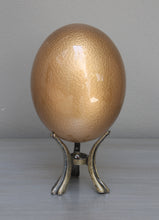 Load image into Gallery viewer, Gold-glazed ostrich egg