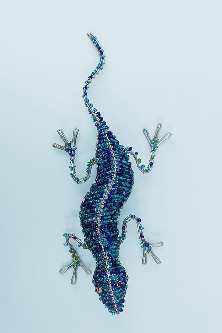 Blue beaded African gecko