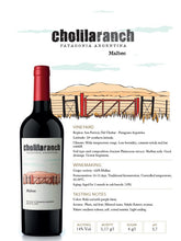 Load image into Gallery viewer, Cholila Ranch Malbec 2019 Patagonia Argentina Carton x 6 bottles.