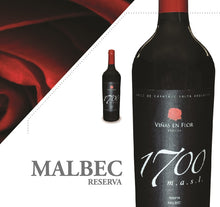 Load image into Gallery viewer, 1700 masl  Malbec Reserva 2013 Carton x 6 bottles.