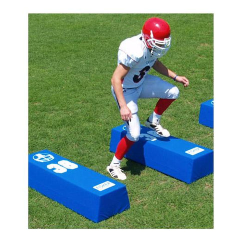 Fisher Dual Step Agility Dummies