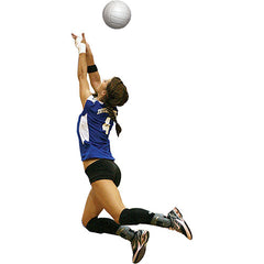 JayPro Volleyball Training Package