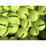 Spinshot Bag of 60 Pressureless Tennis Balls