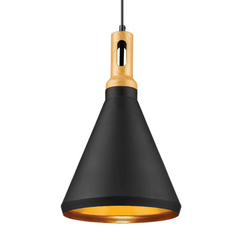 Matte Black Single Light Pendant