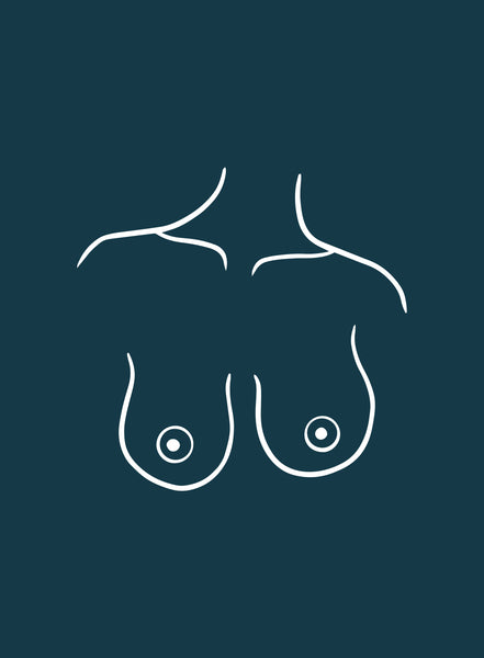 illustration of bell shaped breasts