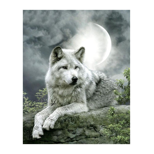Moonlight Wolf - Partial Round Diamond - 30x40cm