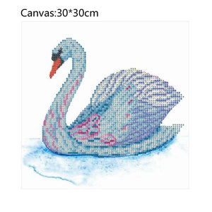 Swan - Partial Round Diamond - 30x30cm