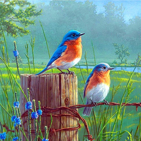 5D DIY Full Drill Diamond Painting Standing Birds