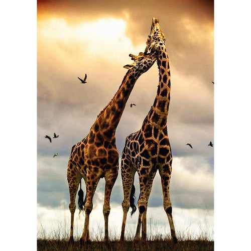 Animal Full Drill 5D DIY Diamond Painting