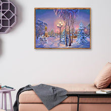 Load image into Gallery viewer, Snow Scenery  - Full Round Diamond - 40x30cm