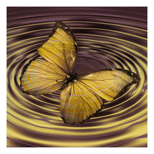Load image into Gallery viewer, Butterfly  - Full Round Diamond - 30x30cm
