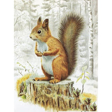 Load image into Gallery viewer, Squirrel  - Full Round Diamond - 30x40cm