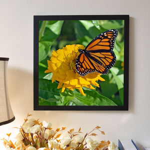 Butterfly 5D DIY Full Drill Diamond Painting