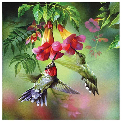 Birds Animal Kit Full Drill Paintings