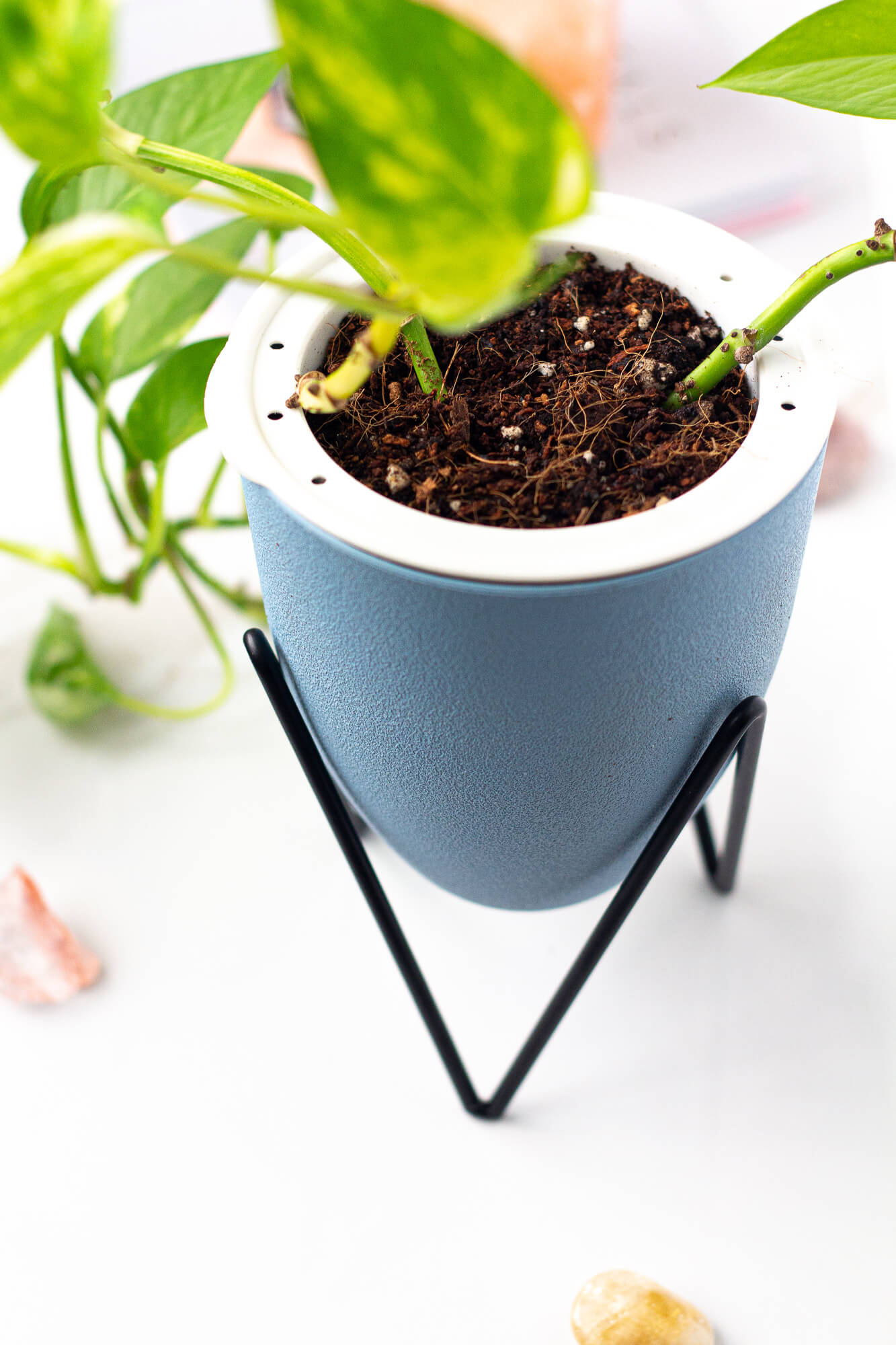 Indoor Self Watering Planter with Soil and Coconut Coir Blue/Green - House of Aster