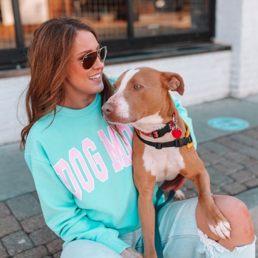 Dog Mom Chalky Mint Comfort Colors Sweatshirt - Treat Dreams