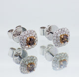 18ct White Gold Argyle & White Diamond Halo Stud Earrings